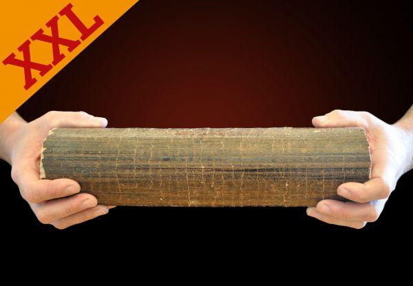 Palette: 960kg runde Buchen-Briketts XXL inkl. bundesweiter Lieferung
